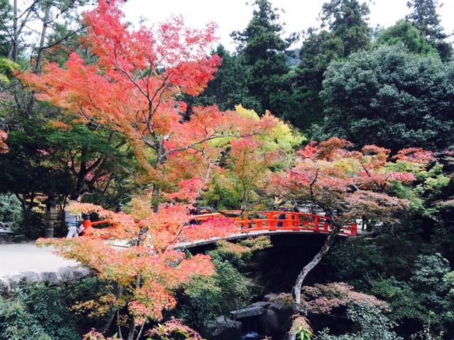 画像: 紅葉谷公園