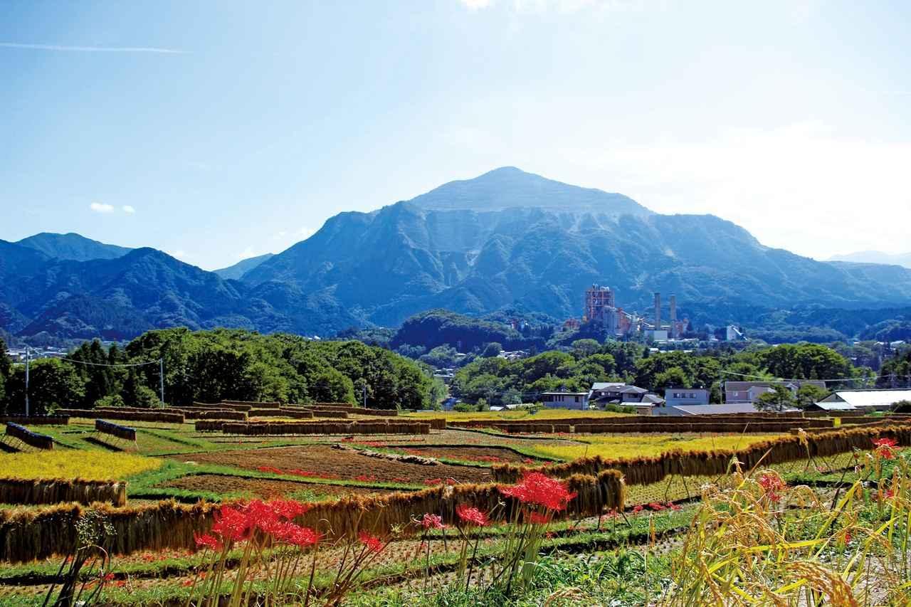 画像: 標高1304mの武甲山は秩父盆地の象徴 日本二百名山のひとつで山登りも楽しめます