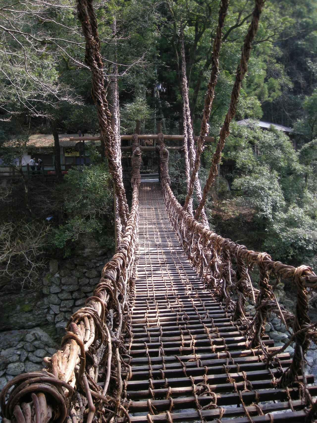 画像: 日本三大奇橋のひとつ「祖谷のかずら橋」(徳島)