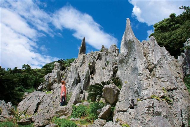 画像: 11月~1月におすすめの沖縄ツアー|クラブツーリズム