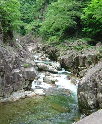 画像: 入口より徒歩約30分・石樋(いしどい) 流紋岩の河床が200mにわたり続いている (イメージ)