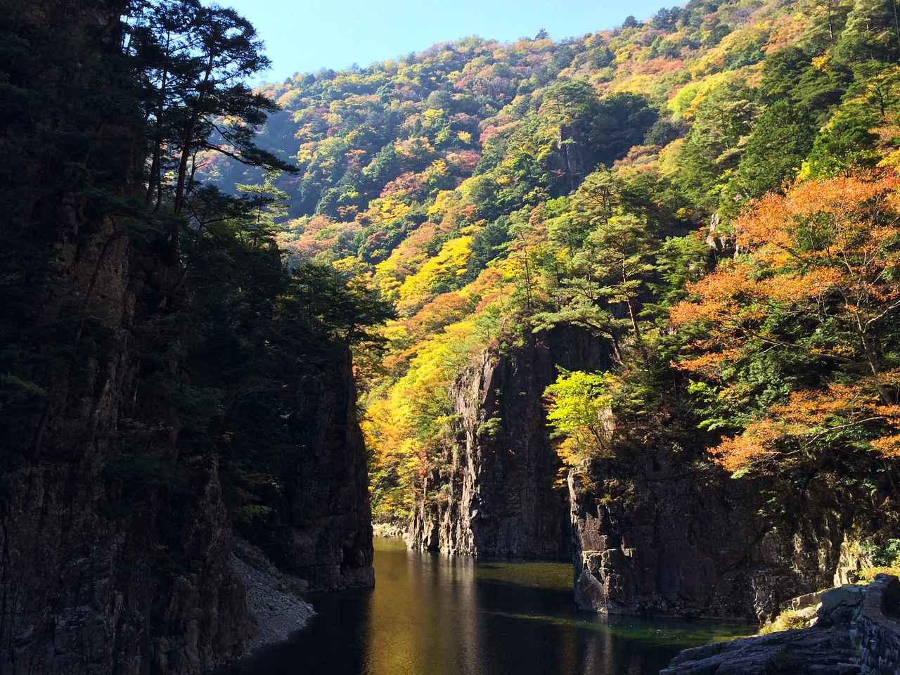 画像: 切り立つ大岩壁と原生林、澄み切った水面が幻想的な空間を繰り広げる黒淵渡舟(イメージ)