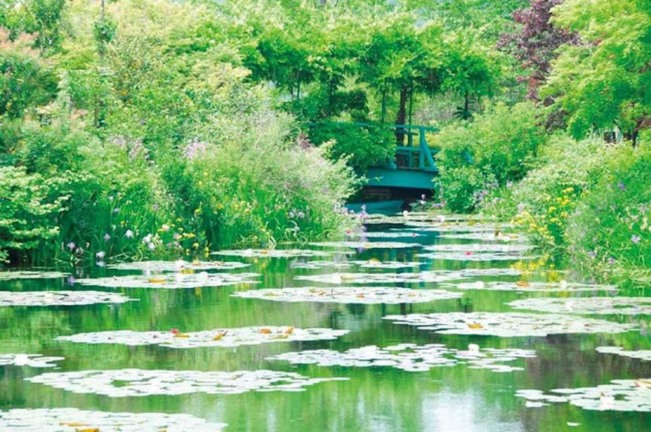 画像: 高知県:北川村「モネの庭」マルモッタン・水の庭(イメージ)