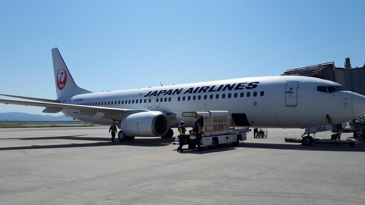 画像: 今回搭乗した機体