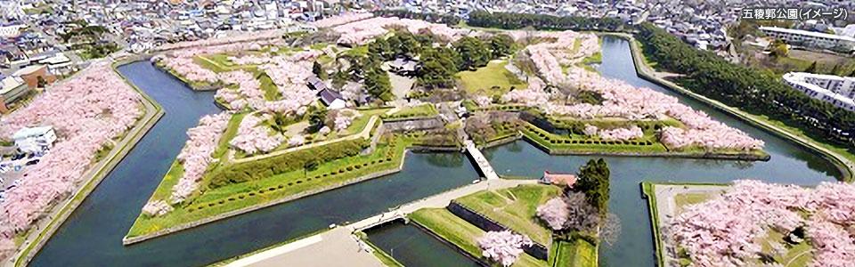 画像: 五稜郭タワーから見下ろす公園※イメージ