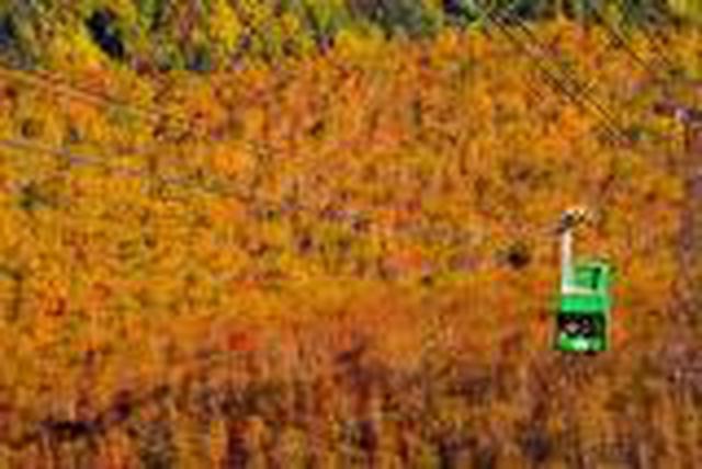 画像: 『旭岳&黒岳2つのロープウェイから望む紅葉の絶景 秋色の銀泉台 旭岳温泉ホテルベアモンテに宿泊 2日間』【札幌北口出発】 <GoToトラベル事業支援対象>|クラブツーリズム
