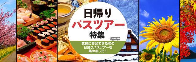 画像: 【公式】【東北発】日帰りバスツアー・旅行特集(出発地別)|クラブツーリズム