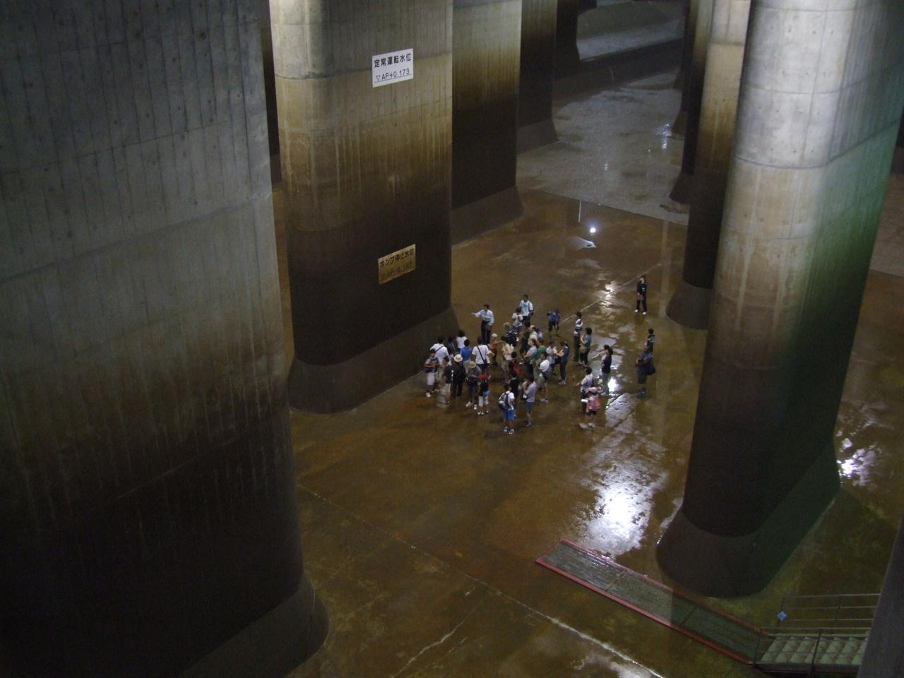 画像2: 写真提供:国土交通省江戸川河川事務局