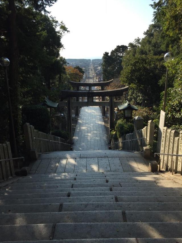 画像: 海まで一直線に伸びる参道(イメージ)