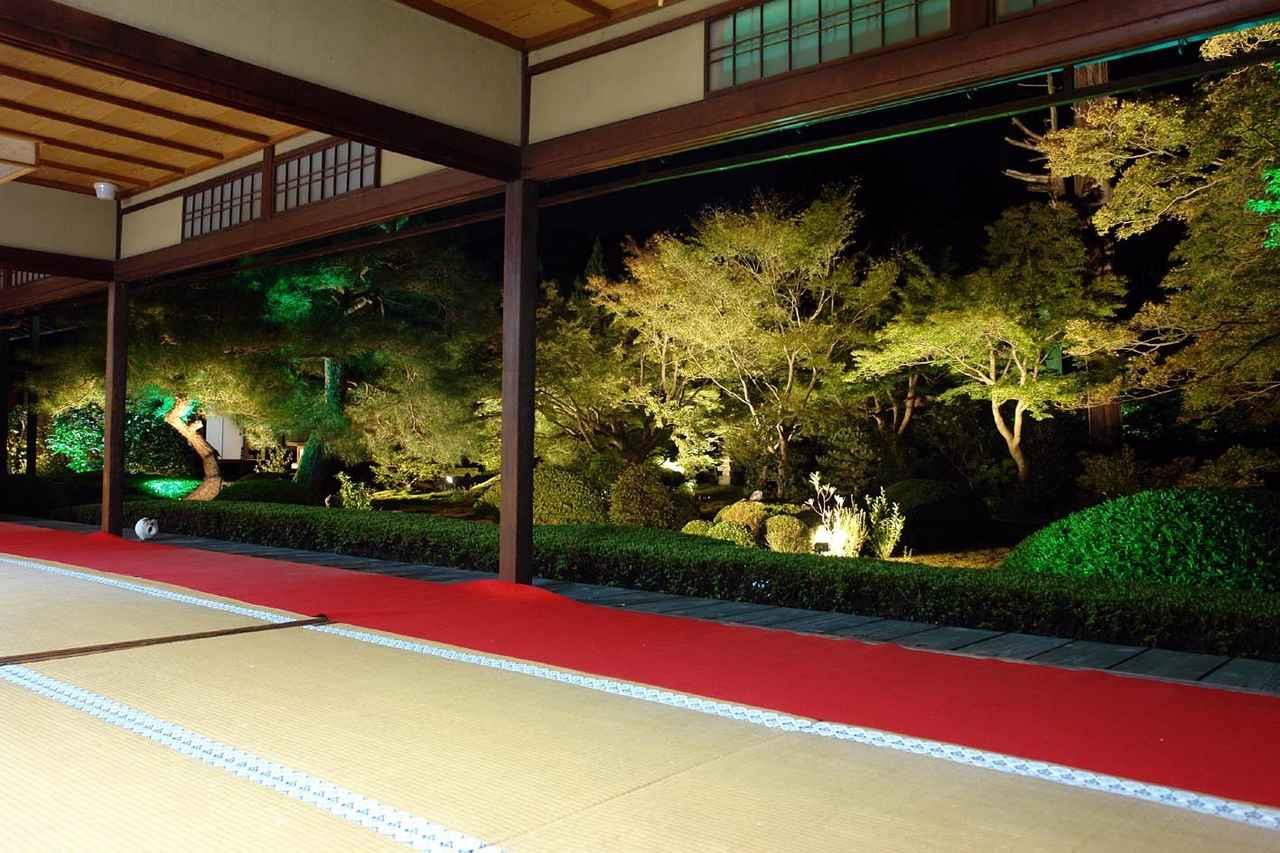 画像: クラブツーリズム九州旅行センター「テーマのある旅」催行状況とスタッフお勧めのたび