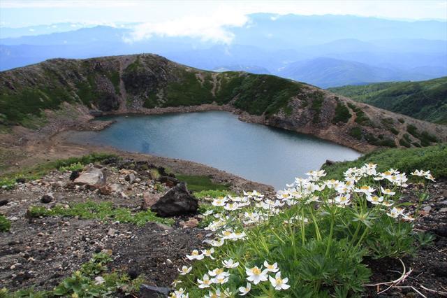 画像: 御嶽山とハクサンイチゲ(イメージ)