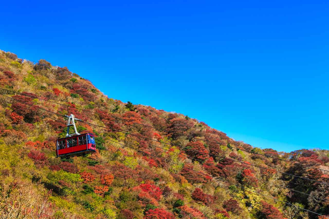 画像: 仁田峠から見る紅葉(イメージ)