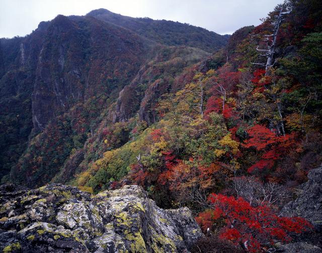 画像: 紅葉の祖母山(イメージ)