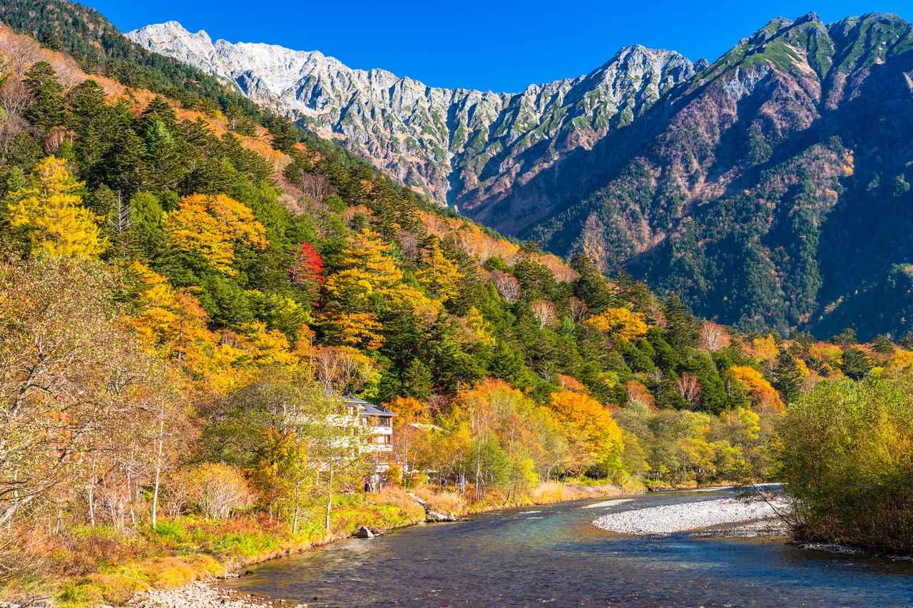 画像: 紅葉と雪のハーモニー(イメージ)