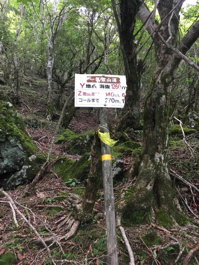 画像: 「Y」地点のみ、標高が50m刻みではなく、標高1260mの表示となっておりました。(イメージ)
