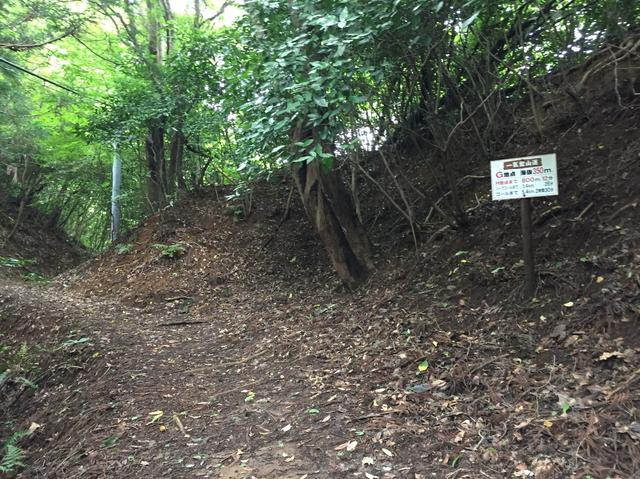 画像: 道はいよいよ本格的な山道へ(イメージ)