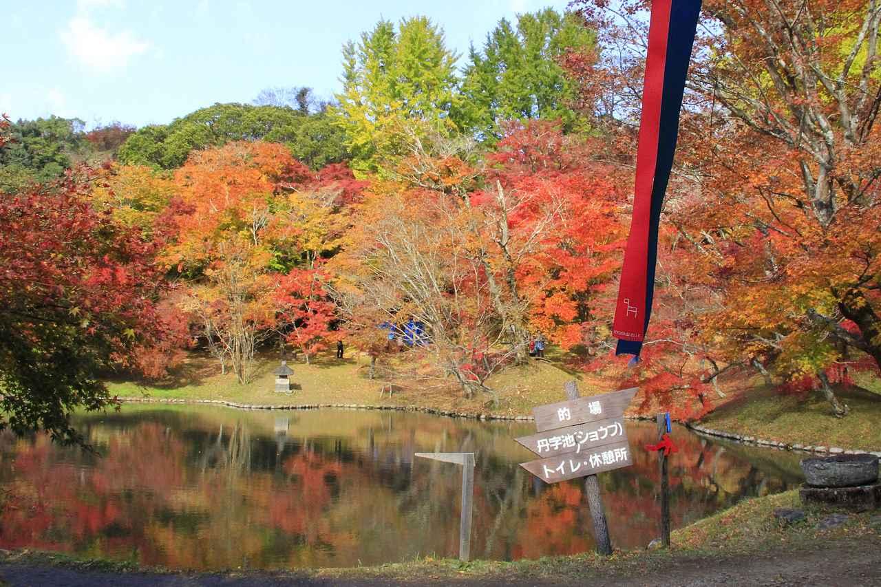 画像: 用作公園(イメージ/九州旅ネット提供) ※紅葉の時期は例年11月中旬から下旬です