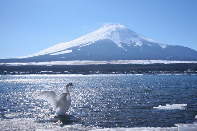 画像: 北東方面・山中湖からの富士(イメージ)