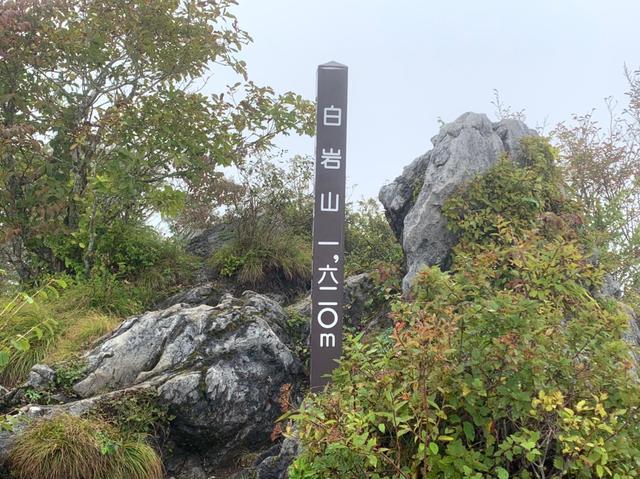 画像3: 九州百名山・「白岩山」と認定ガイド 同行でないと入山できない「津野岳」 2日間