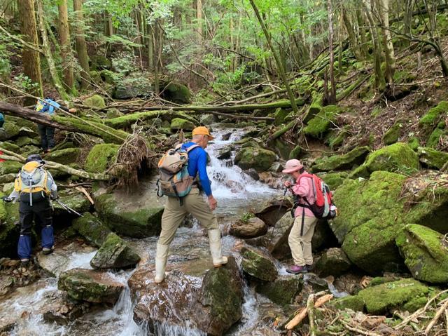 画像5: 九州百名山・「白岩山」と認定ガイド 同行でないと入山できない「津野岳」 2日間