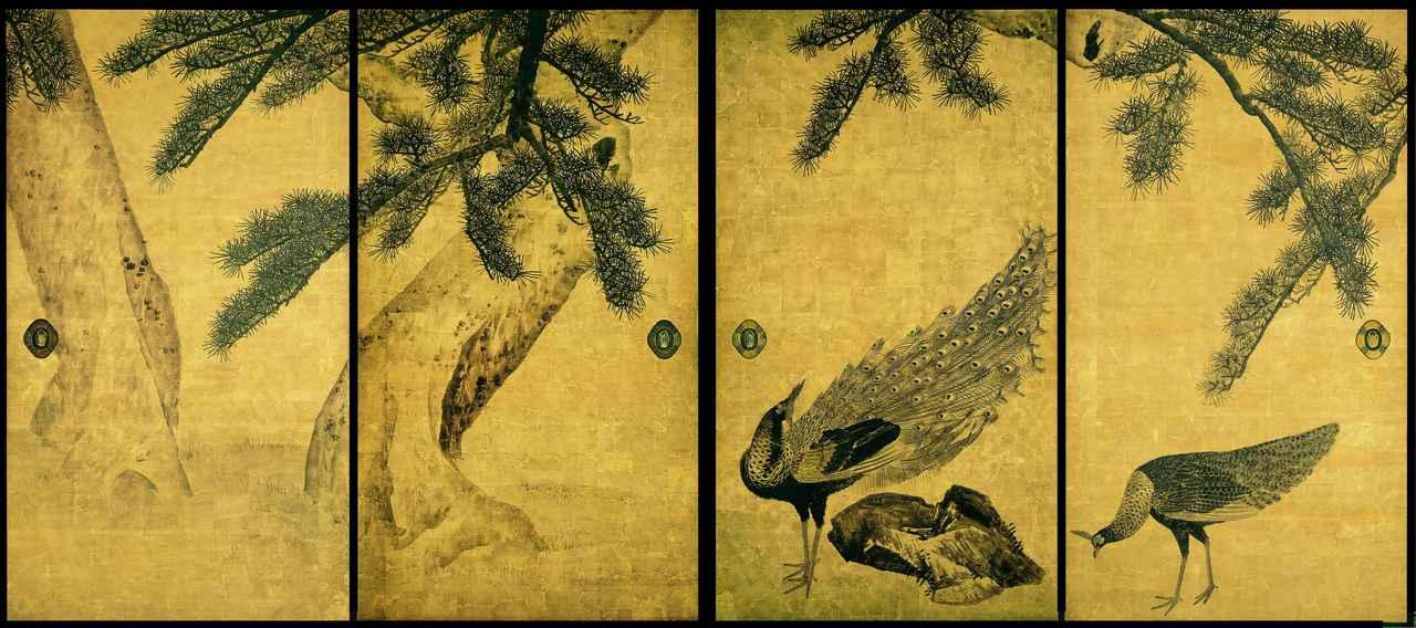 画像: 重要文化財「松に孔雀図」(全16面のうち4面)円山応挙