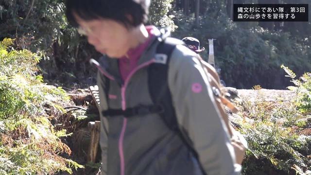 画像: 【クラブツーリズム】縄文杉にであい隊 www.youtube.com