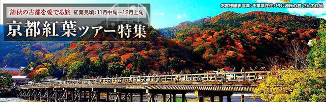 画像: 【九州発】京都紅葉ツアー・旅行|クラブツーリズム
