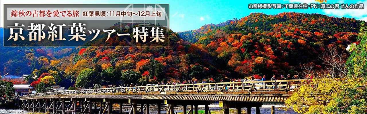 画像: 京都・滋賀紅葉ツアー・旅行|クラブツーリズム