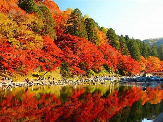 画像: 【九州発】香嵐渓紅葉ツアー・旅行│クラブツーリズム