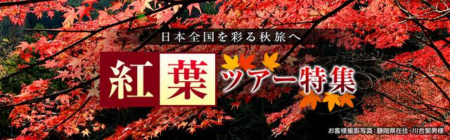 画像: 【九州発列車・飛行機ツアー】秋の紅葉ツアー・旅行2020|クラブツーリズム