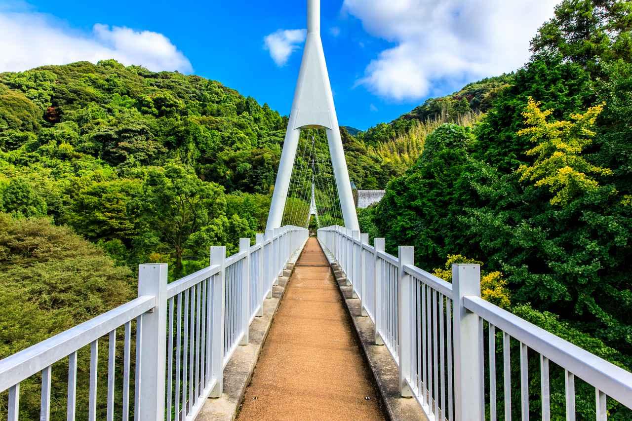 画像: ゆらりんこ橋(イメージ)