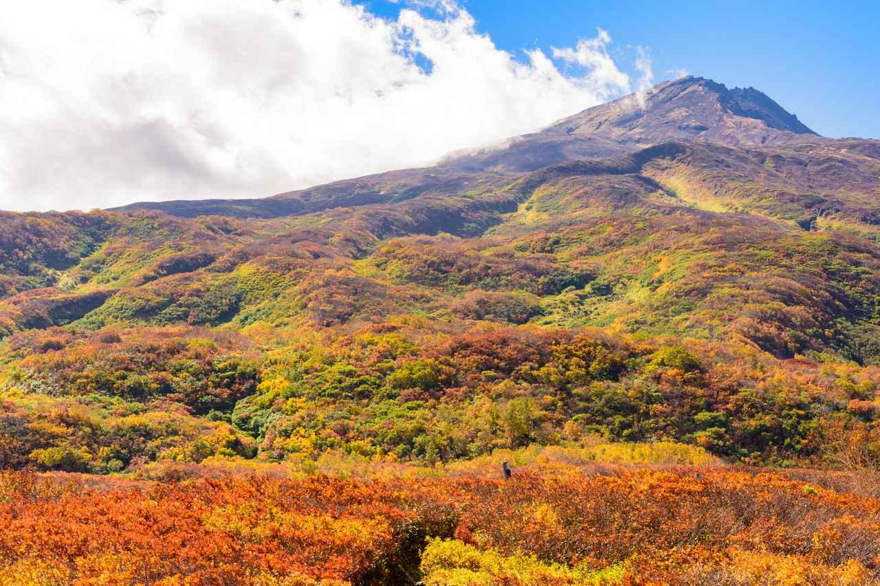 画像: 鳥海山(例年紅葉の見頃は9月中旬~10月中旬)