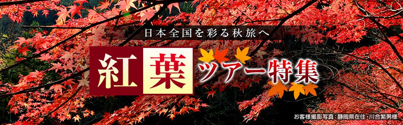 画像: 【東京23区発列車・飛行機ツアー】秋の紅葉ツアー・旅行2020|クラブツーリズム