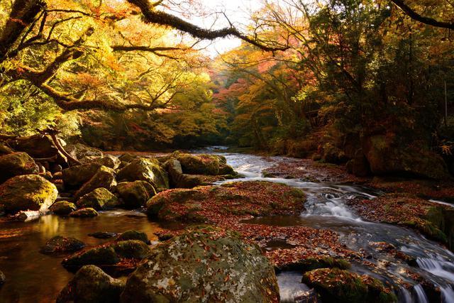 画像: 菊池渓谷(イメージ/例年紅葉の見頃は11月上旬~下旬)