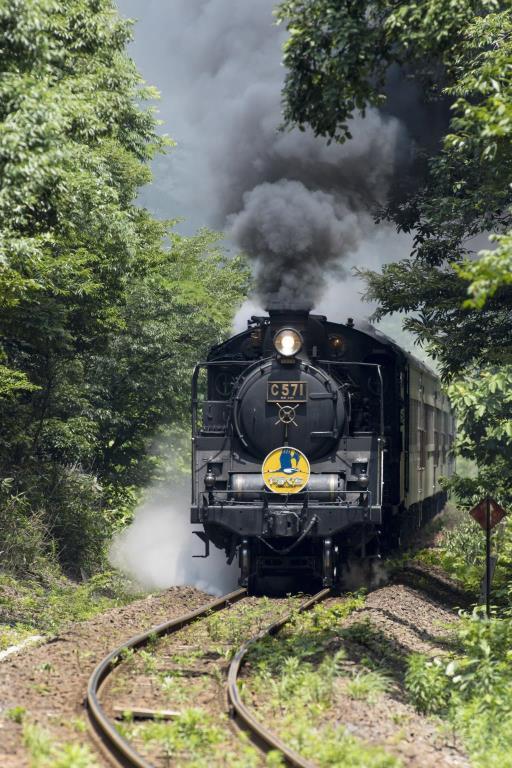 画像: SLやまぐち号 外観(イメージ)※けん引するSLは運用の都合上変更となる場合があります