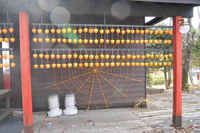 画像: 八ヶ岳倶楽部冬の風物詩・枯露柿