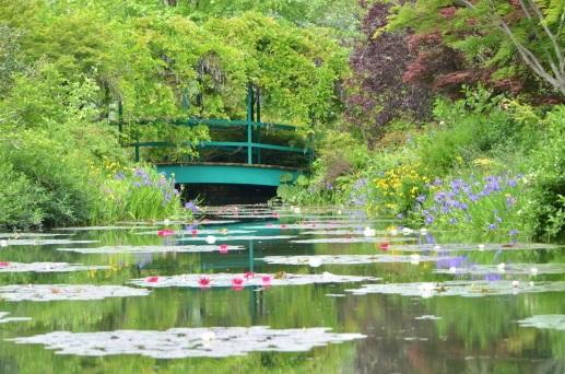 画像1: 写真提供:北川村 モネの庭マルモッタン