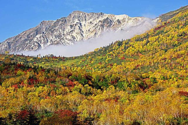 画像: 錦繍の栂池自然園から望む白馬岳(10月)