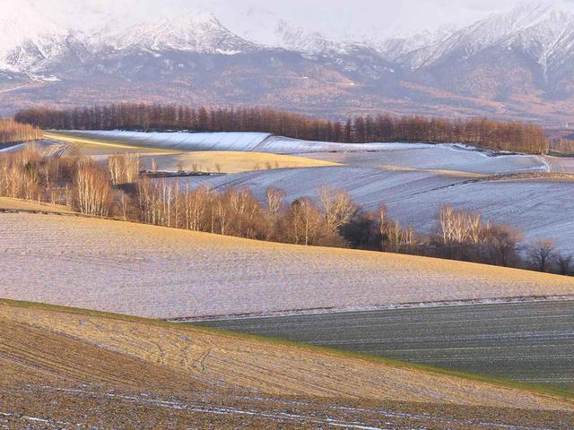 画像: 初冬の丘陵風景(撮影/高橋真澄)