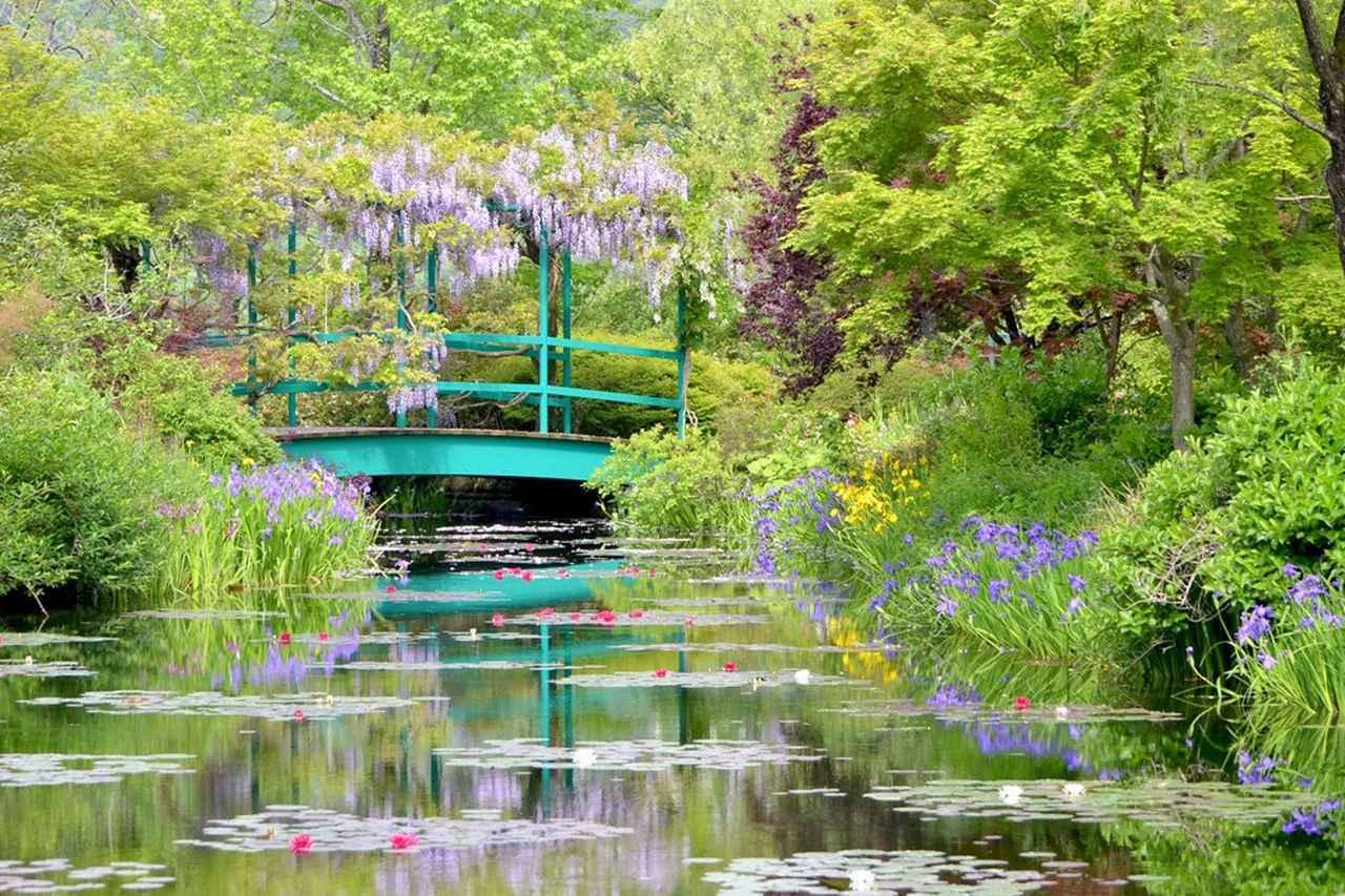 画像: 水の庭(イメージ/※睡蓮の見頃 温帯性睡蓮:4月下旬から10月上旬頃、熱帯性睡蓮:6月下旬から10月下旬頃)