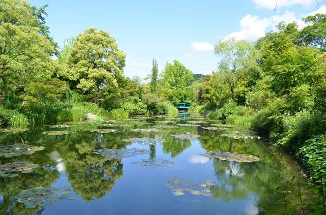 画像: モネの庭「水の庭」全景(イメージ)
