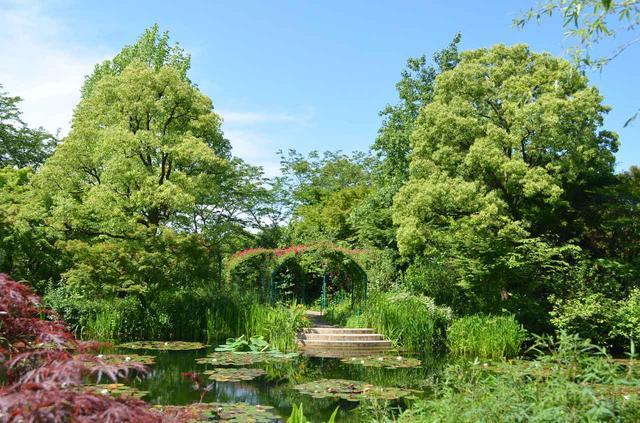 画像: モネの庭「水の庭」 バラのアーチ(イメージ)