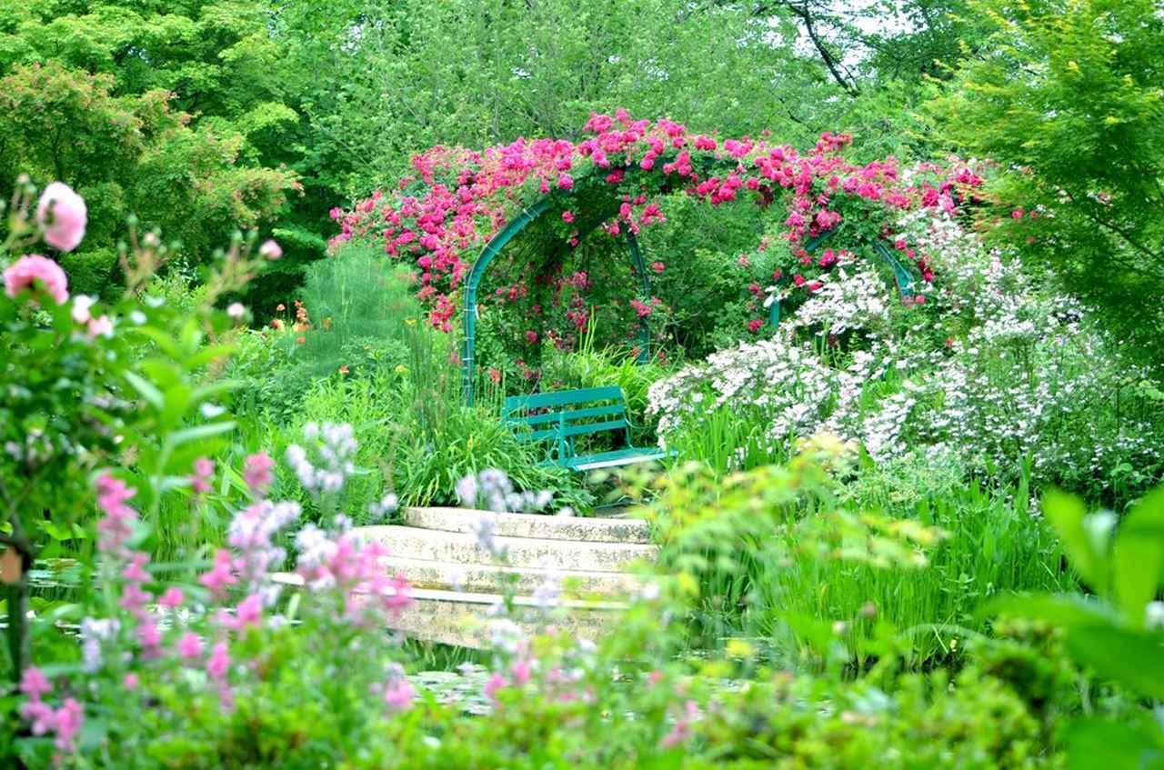 画像: 5月はバラの見事なアーチも楽しめます(イメージ/※バラの見ごろは例年5月上旬~下旬)