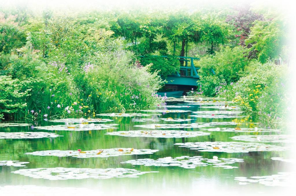 画像: 【関東発】 北川村「モネの庭」マルモッタン特別貸切オープン!