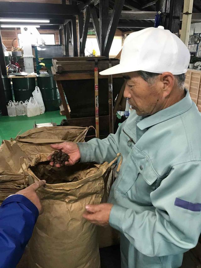 画像: 椿油工場を見学