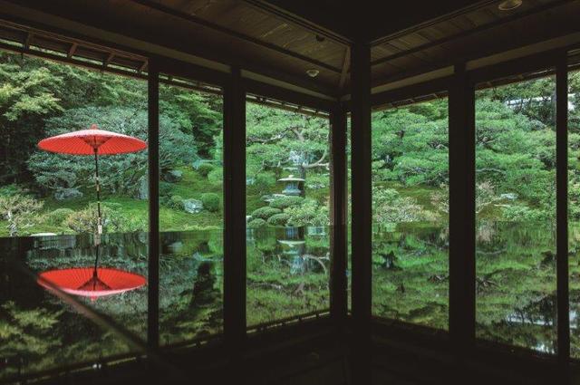 画像: ツアーのお客様だけでじっくり撮影 漆に映り込む緑の庭園 旧竹林院貸切撮影 日帰り