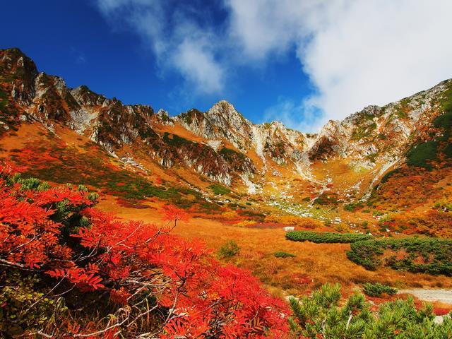 画像: 『標高2,612mのホテル千畳敷に宿泊 宝剣岳に映える鮮やかな紅葉の千畳敷カール 2日間』 【新宿出発】
