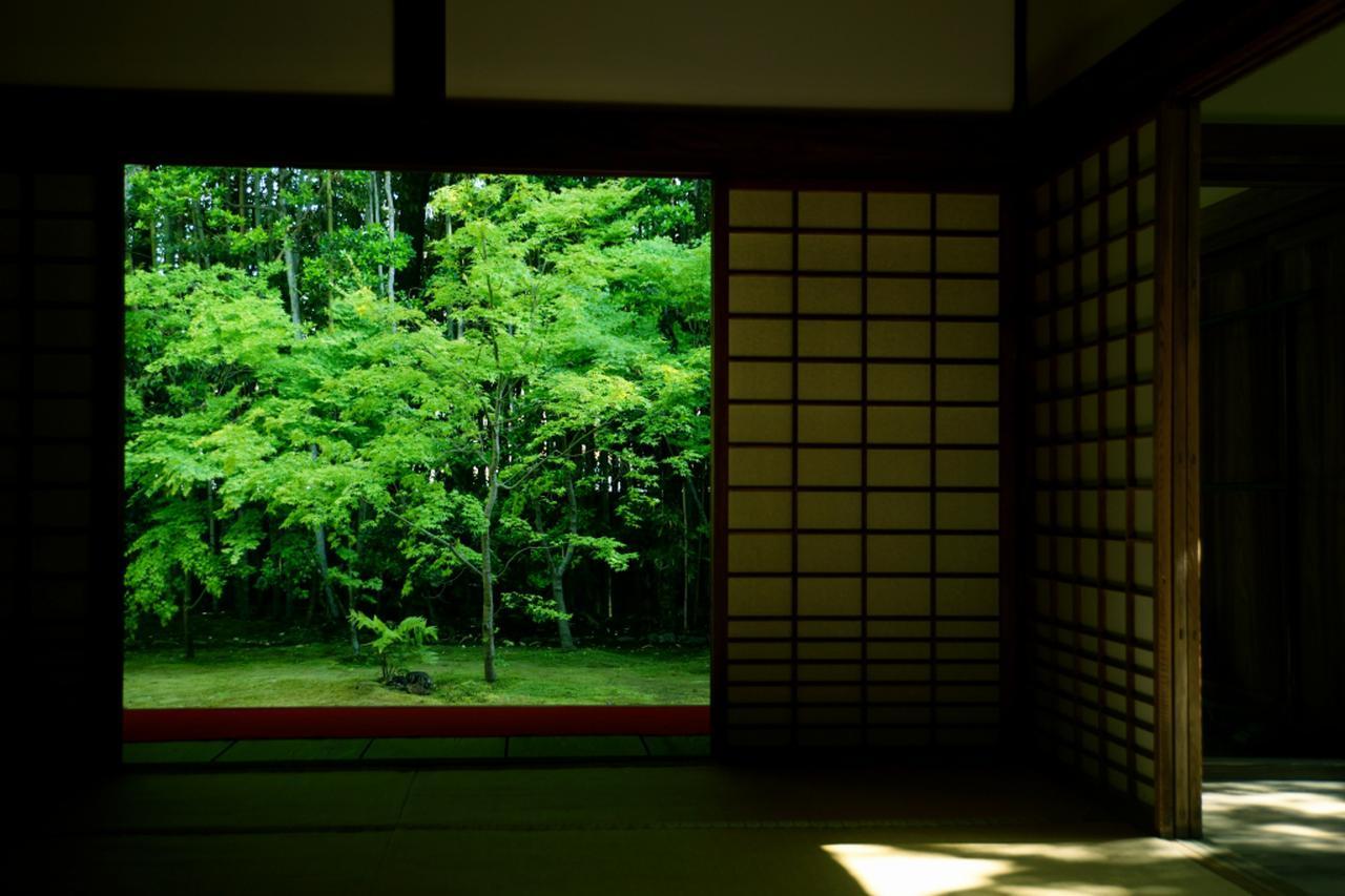 画像: 新緑の京都 額縁
