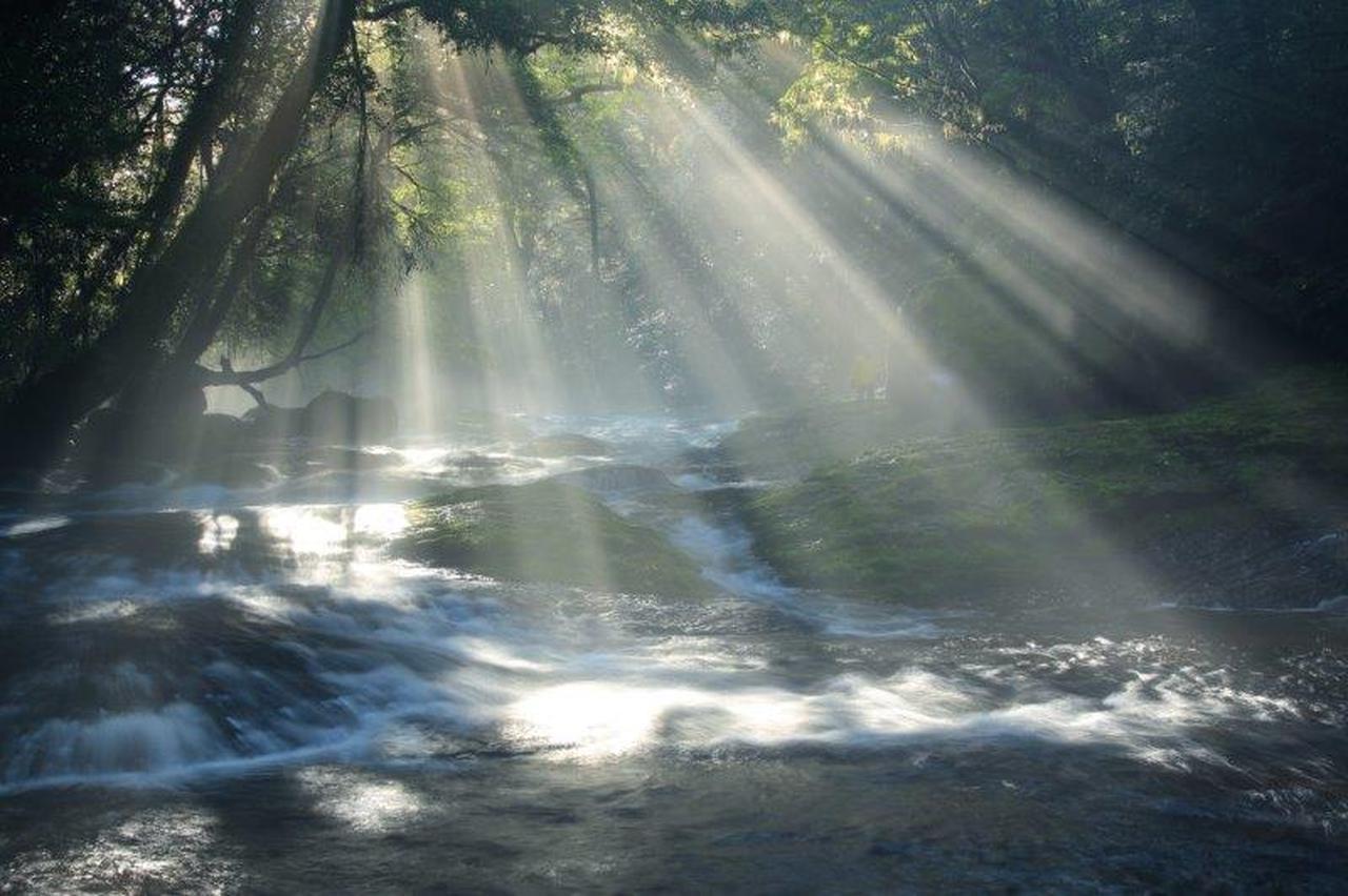 画像: 菊池渓谷の光芒