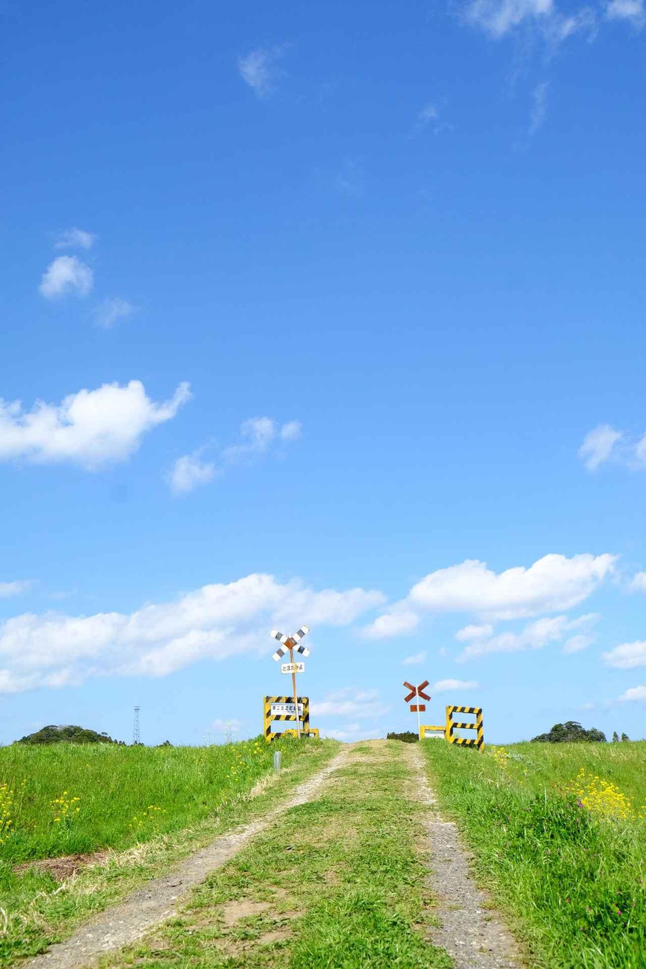 画像2: 伊藤宏美先生撮影 www.club-t.com